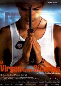 poster la virgen de los sicarios